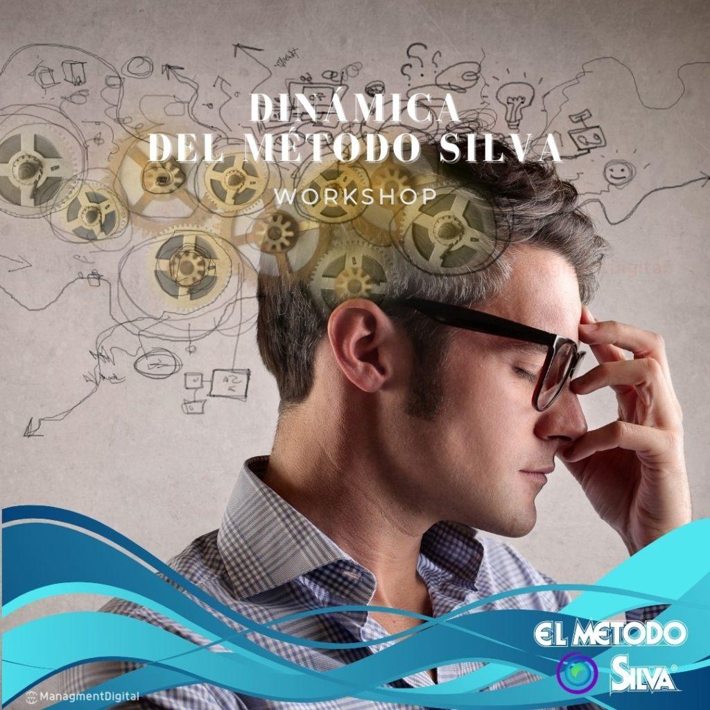 DINAMICA DEL METODO SILVA